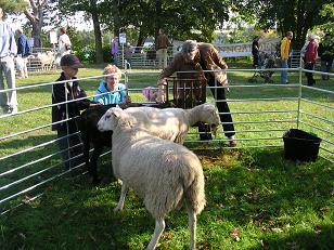 Här beundrar Kerstin några lamm